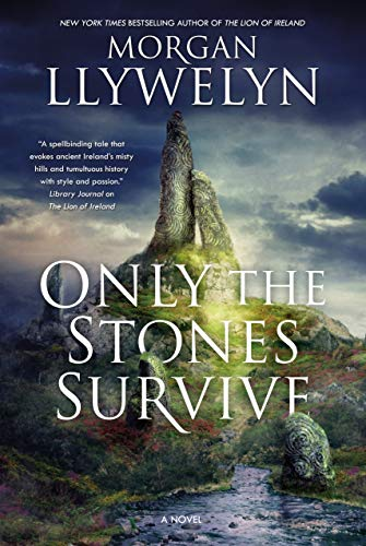 9780765337924: Only the Stones Survive: A Novel of the Ancient Gods and Goddesses of Irish Myth and Legend