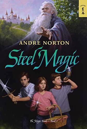 9780765352972: Steel Magic: The Magic Books #1