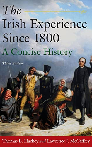 9780765625106: The Irish Experience Since 1800: A Concise History
