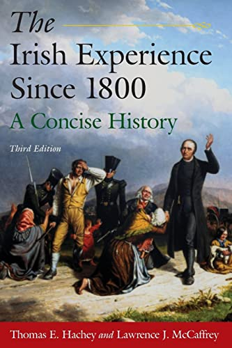 9780765625113: The Irish Experience Since 1800: A Concise History