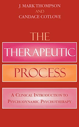 9780765703293: The Therapeutic Process: A Clinical Introduction to Psychodynamic Psychotherapy