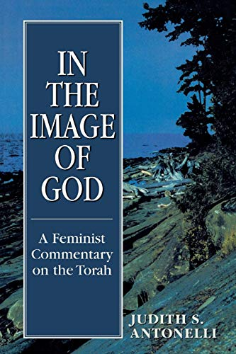 9780765799524: In the Image of God: A Feminist Commentary on the Torch