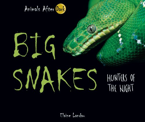 9780766027695: Big Snakes: Hunters of the Night (Animals After Dark)