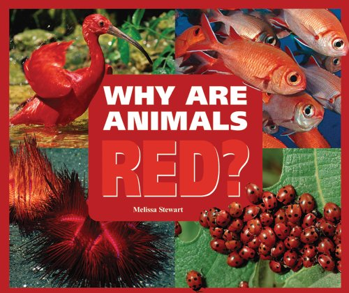 Why Are Animals Red? (Rainbow of Animals) (0766032493) by Melissa Stewart