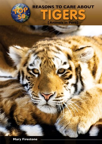 Top 50 Reasons to Care about Tigers: Animals in Peril (Hardback): Mary Firestone