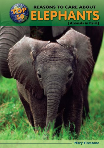 Top 50 Reasons to Care about Elephants: Animals in Peril (Hardback): Mary Firestone