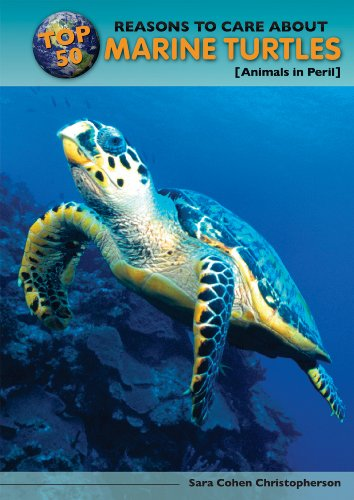 Top 50 Reasons to Care about Marine Turtles: Animals in Peril (Hardback): Sara Cohen Christopherson