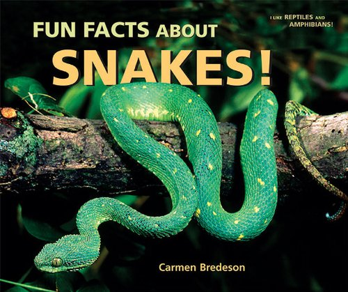 9780766035928: Fun Facts About Snakes! (I Like Reptiles and Amphibians!)