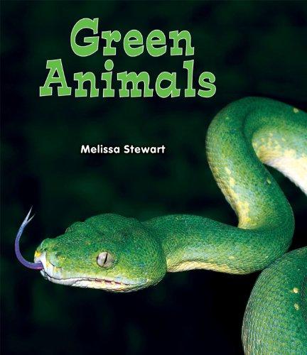 Green Animals (All About a Rainbow of Animals): Stewart, Melissa