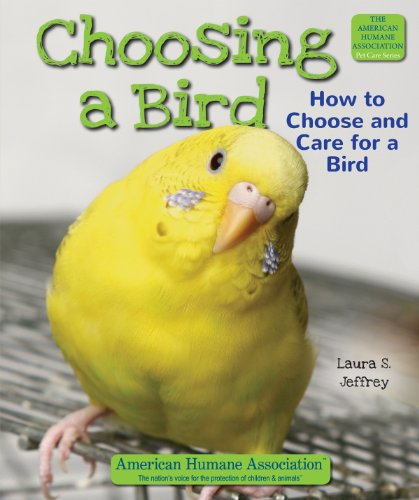 Choosing a Bird: How to Choose and Care for a Bird (Hardback): Laura S Jeffrey