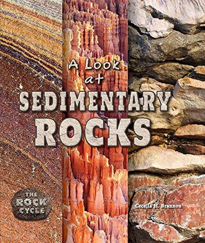 A Look at Sedimentary Rocks (Hardback): Cecelia Brannon