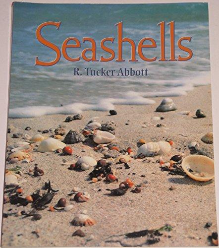 9780766601642: Seashells