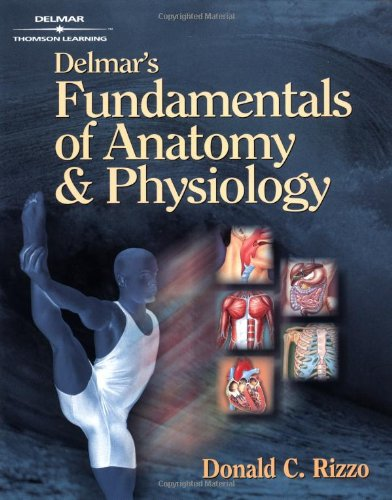 Delmar's Fundamentals of Anatomy and Physiology: Donald C Rizzo