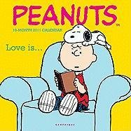 9780767164177: Peanuts Calendar [With Sticker(s)]