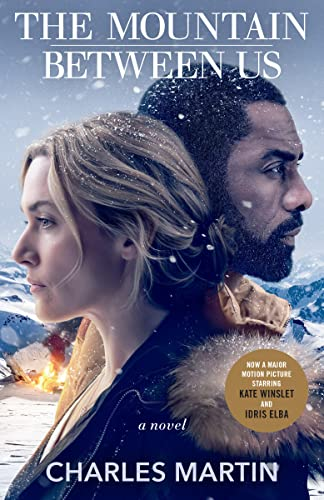 9780767927024: The Mountain Between Us: A Novel