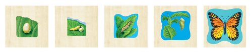 9780768207804: How a Butterfly Grows Wooden Layered Puzzle (Wooden Layered Puzzles)