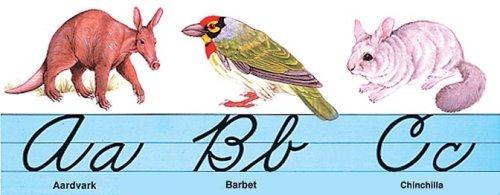 9780768216721: Cursive Alphabet Bulletin Board Set (Alphabet Lines)
