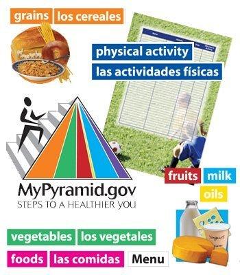 9780768234527: MyPyramid.gov Bulletin Board Set (Bulletin Board Sets)