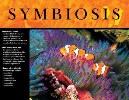 9780768235616: Symbiosis Survival Skills in the Animal World Cheap Chart (Cheap Charts)