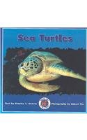 9780768503531: Sea Turtles (Dominie Marine Life Set 2)