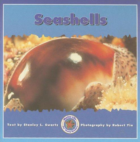 9780768503555: SEASHELLS (Dominie Marine Life Young Readers)