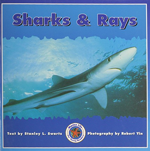 9780768503579: SHARKS & RAYS (Dominie Marine Life Young Readers)