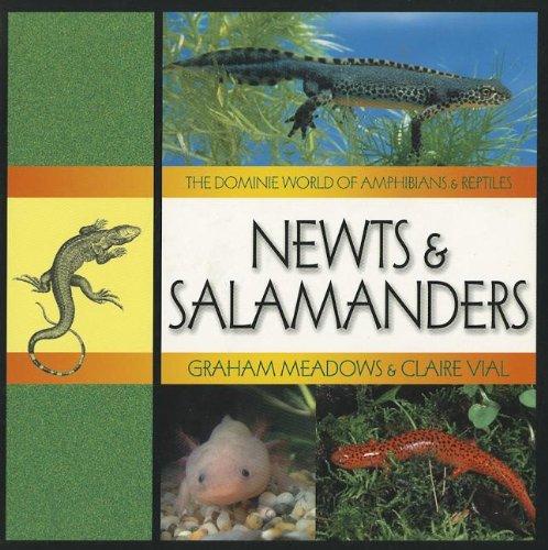 NEWTS & SALAMANDERS (Dominie World of Amphibians & Reptiles): Dominie Elementary