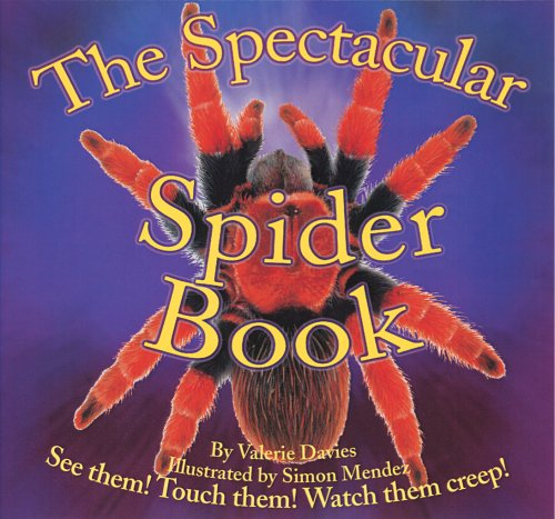 9780769644295: The Spectacular Spider Book (Beautiful Bug)