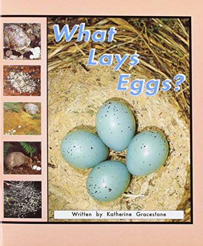 9780769900964: What Lays Eggs? (Storyteller)