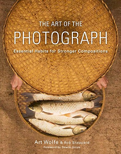 9780770433161: The Art of the Photograph: Essential Habits for Stronger Compositions