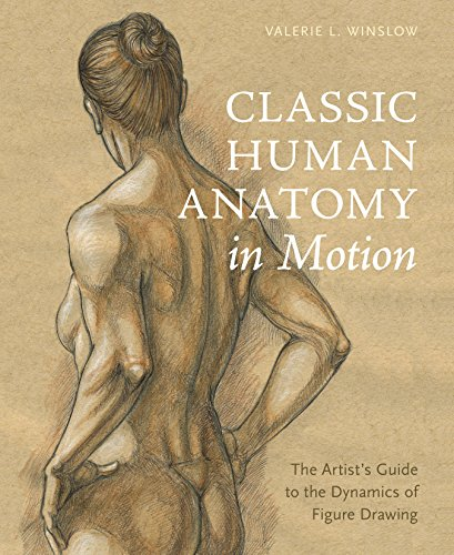 9780770434144: Classic Human Anatomy in Motion: The Artist's Guide to the Dynamics of Figure Drawing