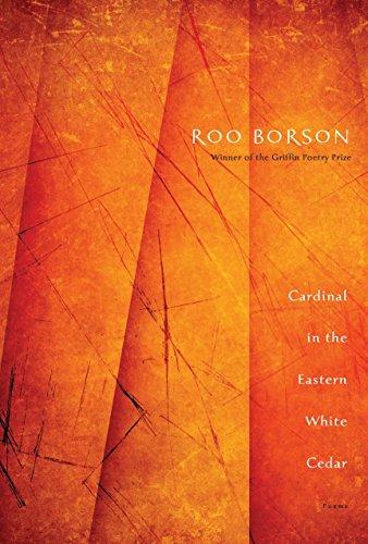 Cardinal in the Eastern White Cedar: Roo Borson