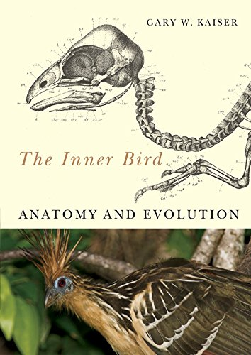 9780774813433: The Inner Bird: Anatomy and Evolution