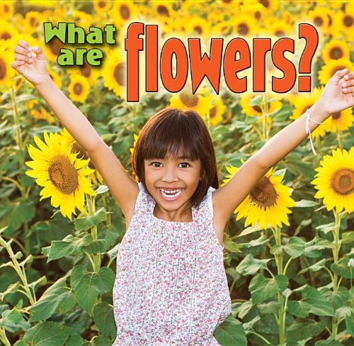9780778700166: What Are Flowers? (Plants Close-Up)
