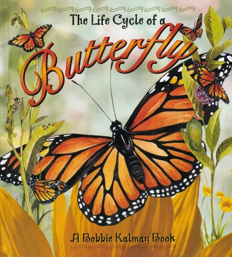9780778706502: The Life Cycle of a Butterfly