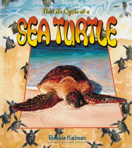 The Life Cycle of a Sea Turtle (0778706524) by Bobbie Kalman
