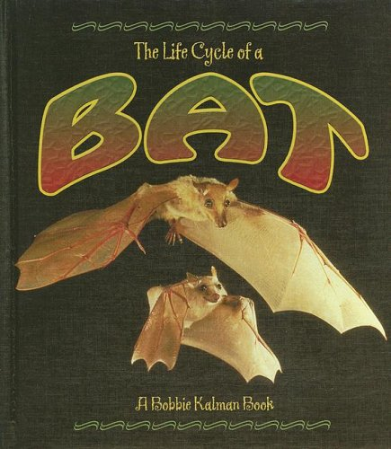 Bat (Life Cycle of A...(Library)): Rebecca Sjonger; Bobbie
