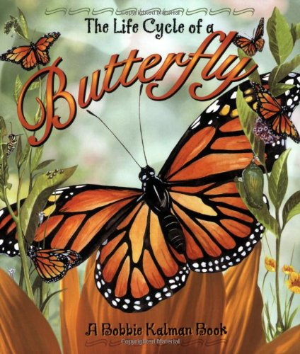 9780778706809: The Life Cycle of a Butterfly