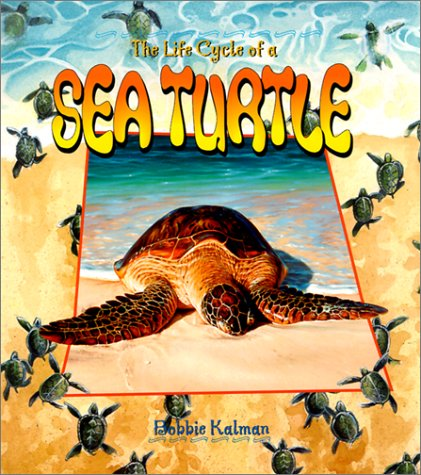 9780778706823: The Life Cycle of a Sea Turtle