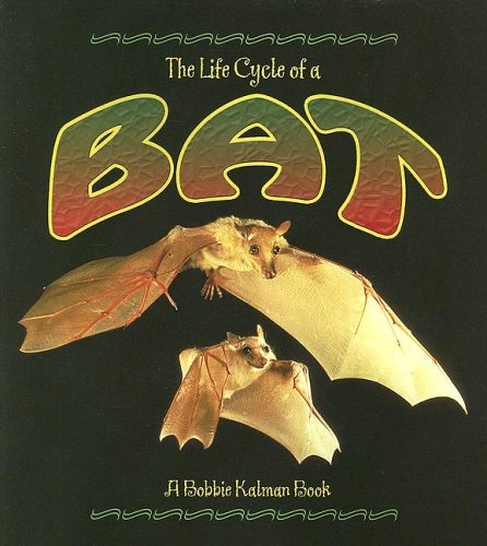The Life Cycle of a Bat: Sjonger, Rebecca, Kalman,