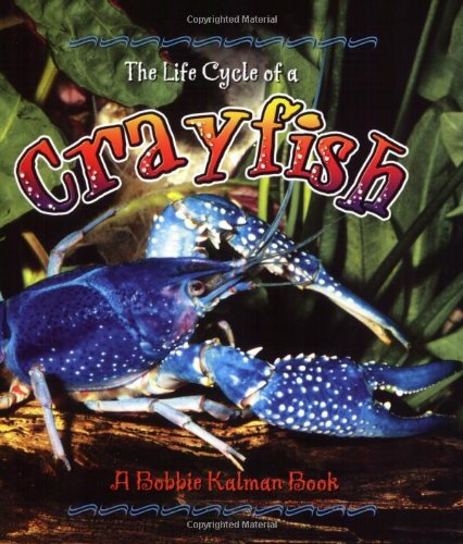 9780778707035: Crayfish (Life Cycle of A...(Paperback))