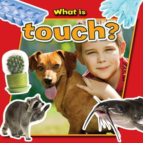 9780778709916: What Is Touch? (Senses Close-Up)