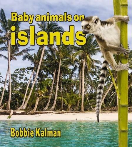 9780778710271: Baby Animals on Islands (Habitats of Baby Animals (Paperback))