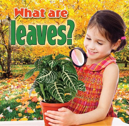 What Are Leaves? (Plants Close-Up): Macaulay, Kelley