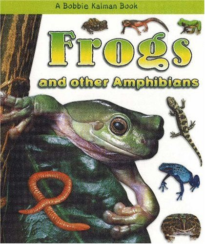 Frogs and Other Amphibians (What Kind of: Bobbie Kalman