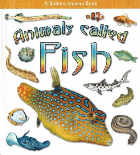 Animals called fish what kind of animal is it by for Are fish considered animals
