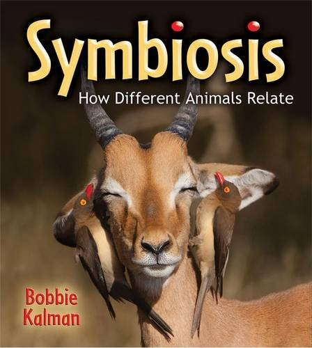 9780778728238: Symbiosis: How Different Animals Relate (Big Science Ideas (Paperback))