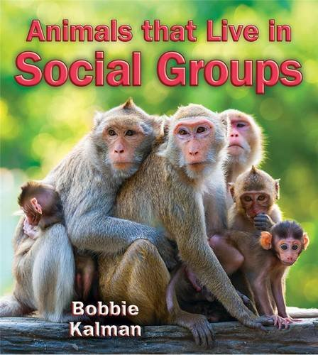 9780778728252: Animals that Live in Social Groups (Big Science Ideas)