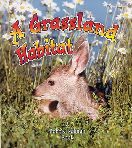 9780778729877: A Grassland Habitat (Introducing Habitats)