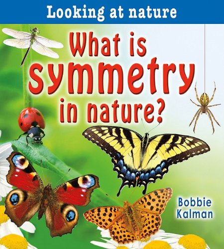 9780778733270: What Is Symmetry in Nature? (Looking at Nature)